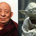 Erről a buddhista szerzetesről mintázták volna Yoda-mestert?