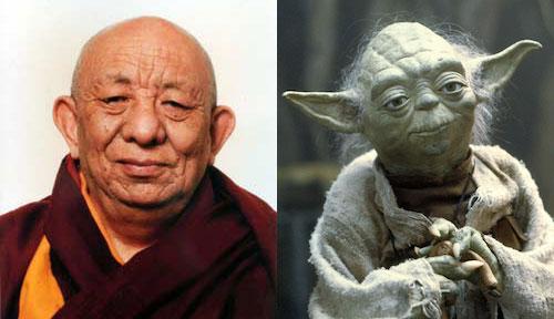 yoda-rinpoche.jpg