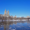 Winter in New York_Tél New Yorkban
