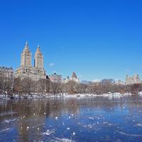 Winter in New York_Tél New Yorkban