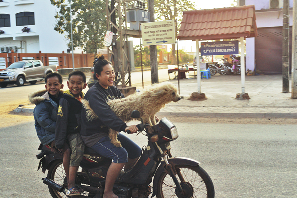 4_on_a_scooter_plus_dog.jpg