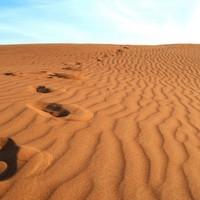 A sivatag igazsága