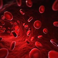 A vérről...egy kicsit másként IV.rész