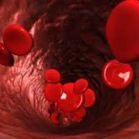A vérről... egy kicsit másként II.rész