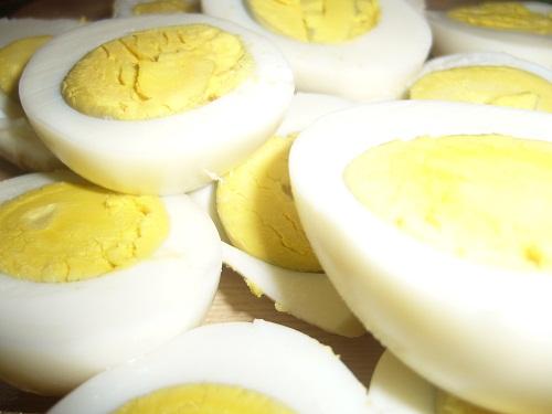 2.fotó tojás.JPG