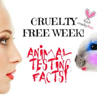 TOP 5 állatkísérletmentes kozmetikum