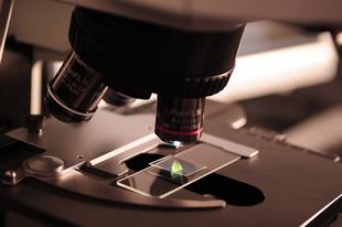 A H&M fél millió dollárral támogatja a koronavírus kutatást!