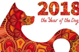 Neked mit hoz majd idén a Kutya éve?