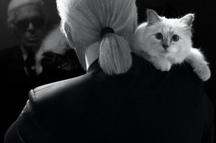 Karl Lagerfeld, a géniusz