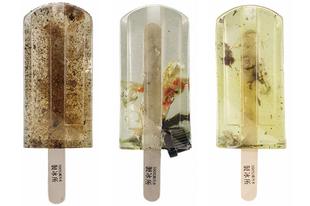 Szennyvízből készített jégkrémmel a környezetvédelemért!