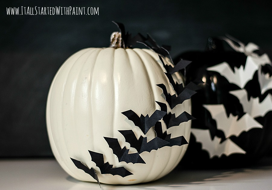 1443734075-bats-on-pumpkin-no-carve-2.jpg