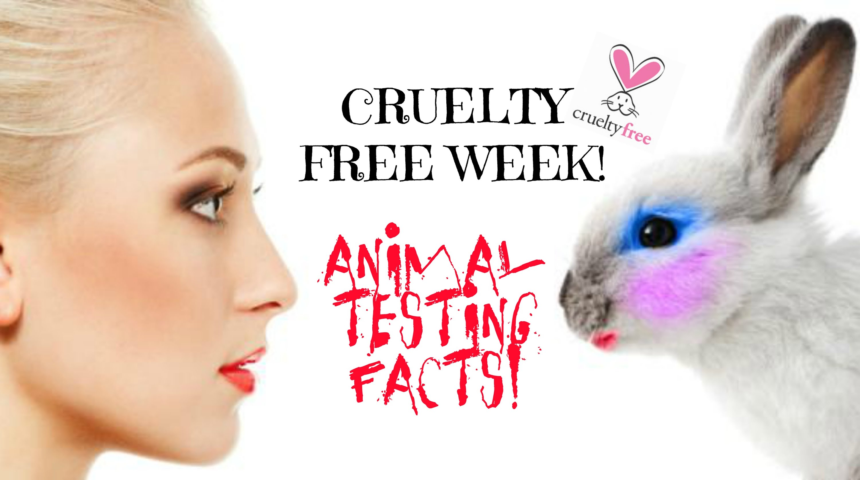animal_test.jpg