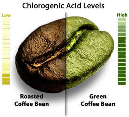 chlorogenic_acid_coffee.jpg
