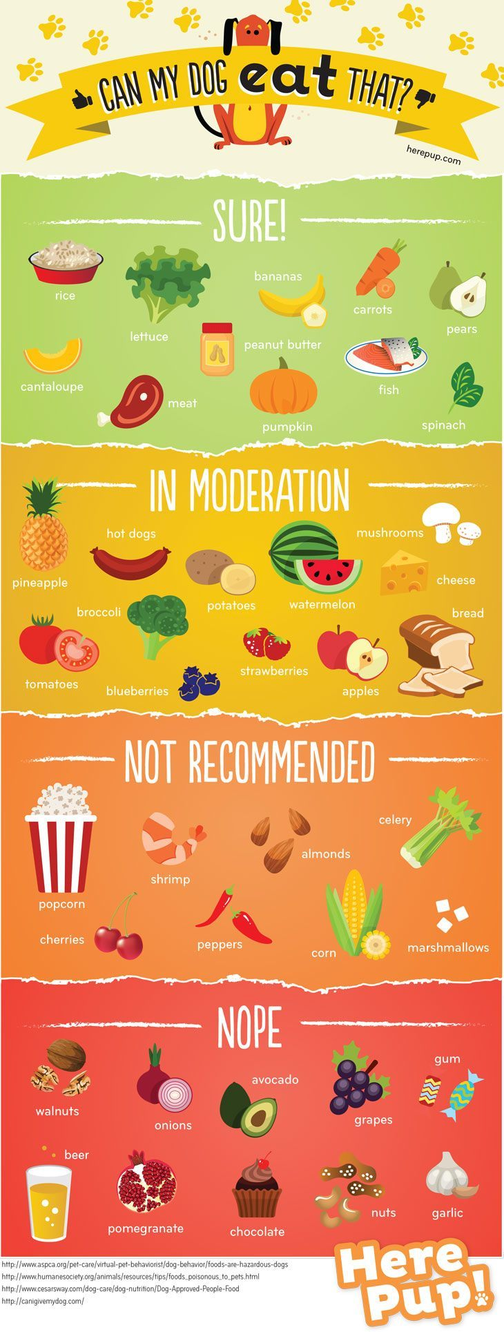 dogfood_infographic-3.jpg