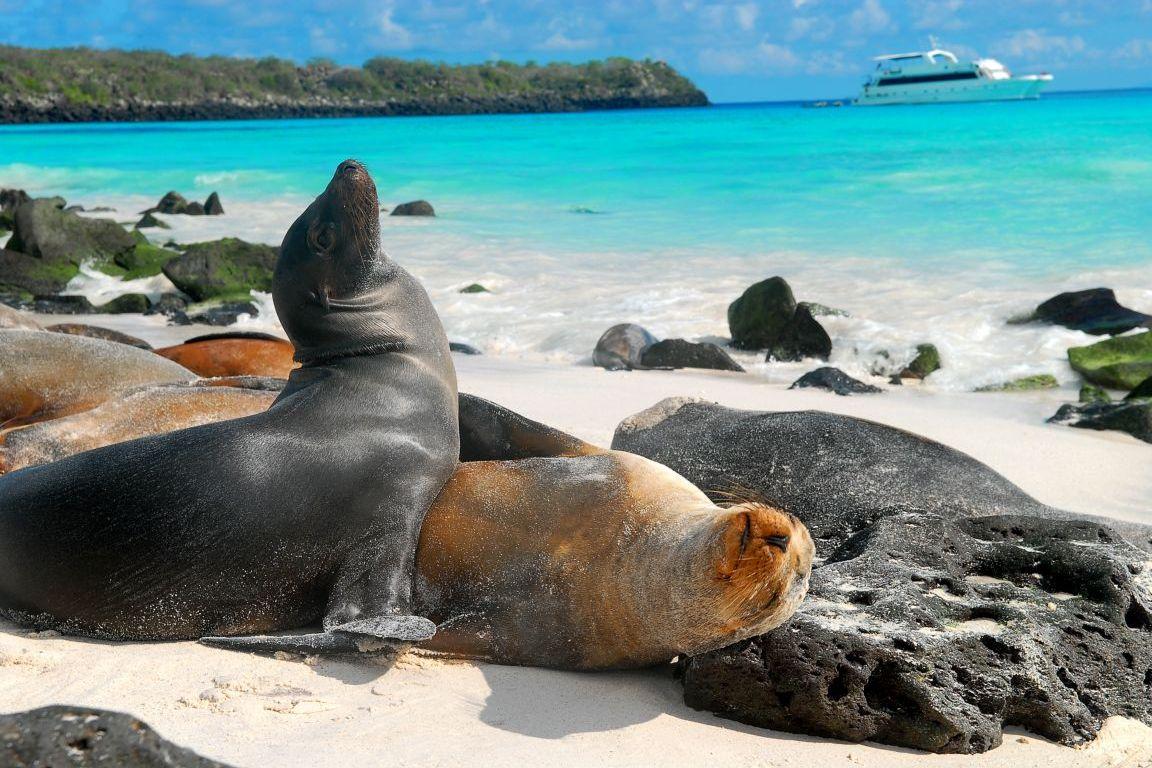 galapagos-islands-3.jpg