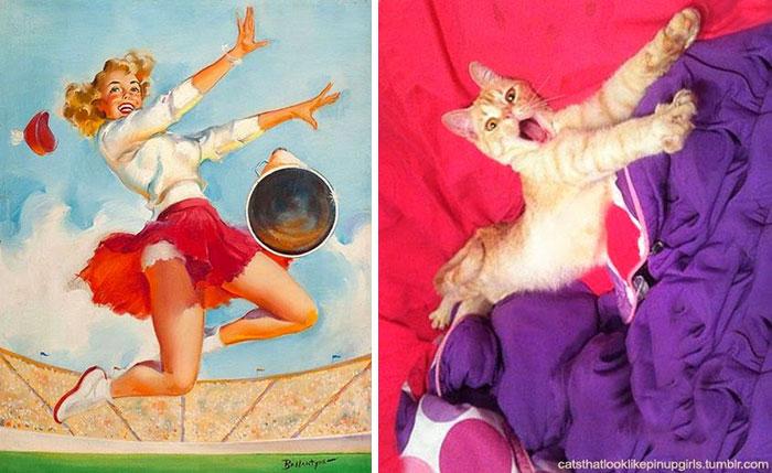 pinupcats_1.jpg