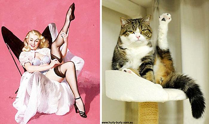 pinupcats_9.jpg