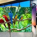 Újabb résztvevő az OLED tv színtéren