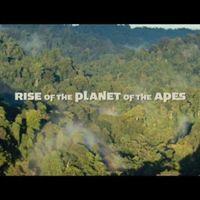 Remake (reboot) is lehet jó - A majmok bolygója – Lázadás (2011) Blu-ray teszt