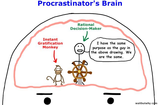 p_brain.png