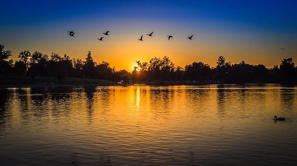dawn-dusk-lake-164243.jpg