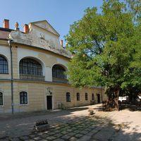Tájegységi értékeink 11. rész: A tornanádaskai Hadik-kastély parkja és Magyarország legidősebb akácfája