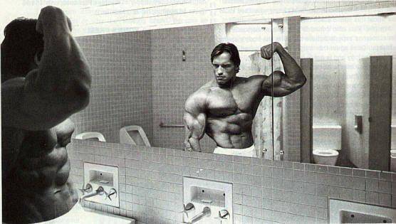 Arnold-Flexing-Mirror.jpg