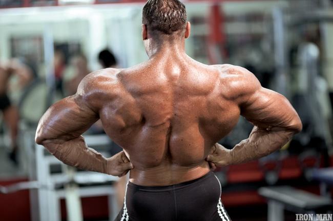 muscular_back_12_20120403_1176193303.jpg