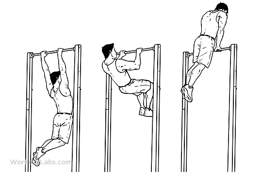 muscle_up.png