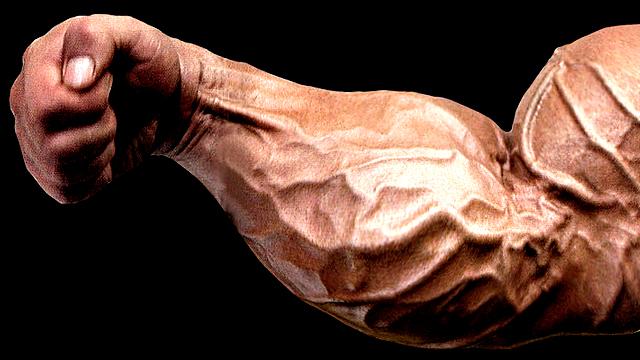 forearm-training.jpg