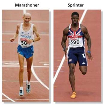 high-intensity-interval-training-hiit.jpg