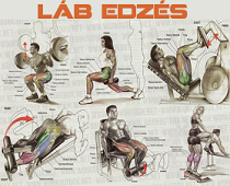 lab2.png