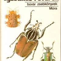 Vásárhelyi Tamás és Csiby Mihály (1989): Egzotikus rovarok.