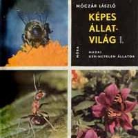 Móczár László (szerkesztette) (1963): Képes állatvilág I. Hazai gerinctelen állatok.