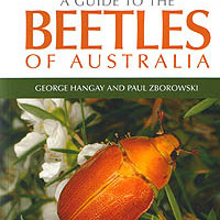 George Hangay és Paul Zborowsky (2010): A Guide to the Beetles of Australia.