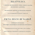 Kuthy Dezső: Ordo. Coleoptera. – In: A Magyar Birodalom Állatvilága (Fauna Regni Hungariae). III. Arthropoda. (Insecta. Coleoptera.).