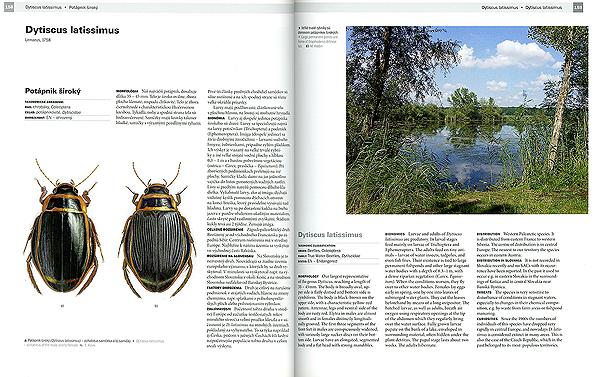 Natura2000_slovak_oldalak_index.jpg
