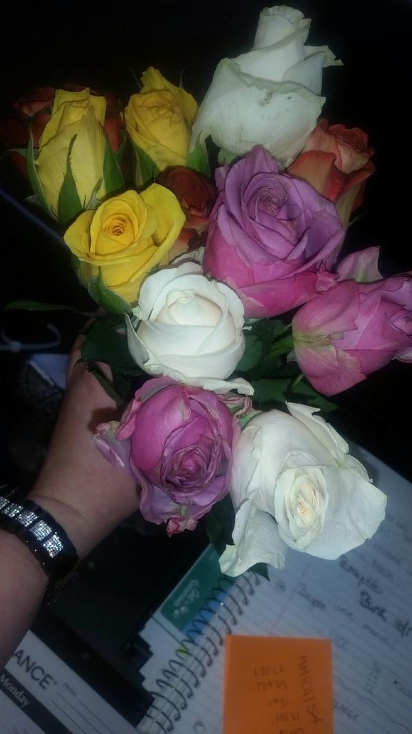 flower_b9-4jn-cyae6whn.jpg