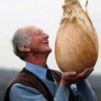 A világ legnagyobb zöldségei