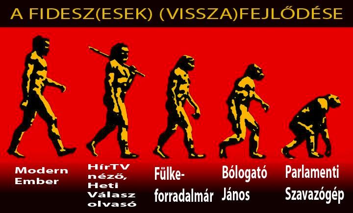 fidesz-small_1332361698.jpg_720x436