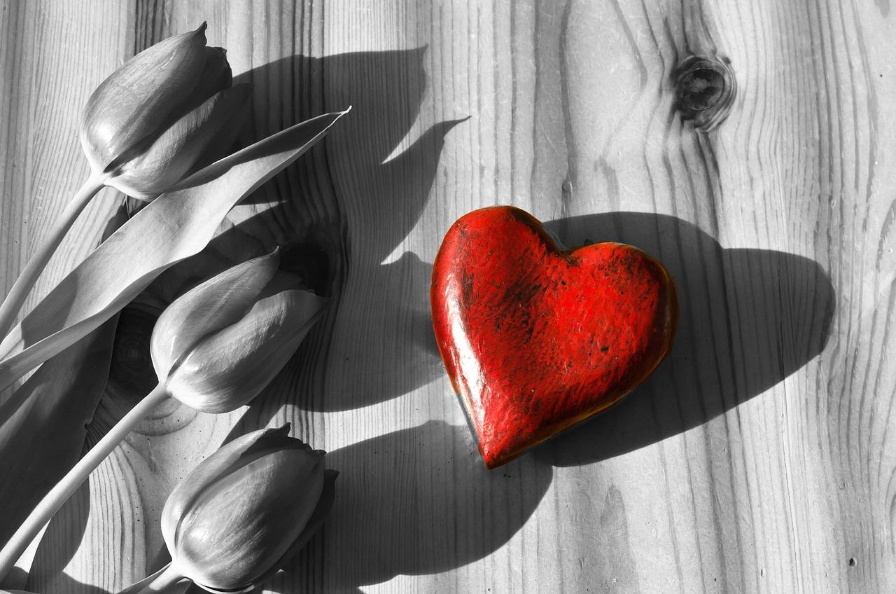 flowers-164316_1280.jpg