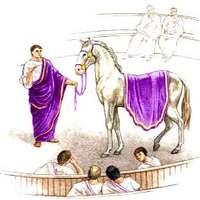 Caligula kancái