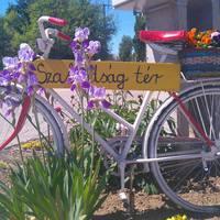 MÉG néhány nap! Legyünk büszkék, hogy az Érd Körbe kerékpáros felvonulás, immáron 32. alkalommal kerül megrendezésre!