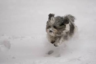 Mára Érdre figyelmeztetést adtak ki hófúvás miatt