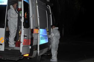 FRISS HÍREK AZ ÉRDI HALÁLOS LESZÁMOLÁSRÓL! Egy halott, 12 kórházi sérült, 12-en a sitten