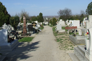 Ne vegyék kegyeletsértésnek Érden, ha az ÉKFI-től kapnak levelet a temetőben is, nem mindig Önöknek szól.
