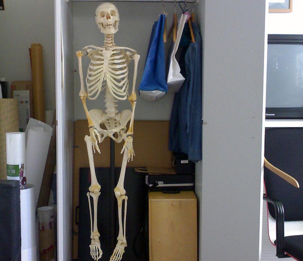 csontvaz.jpg