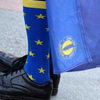 LESZ MIBŐL VÁLASZTANI GYŐRBEN IS! Akár 264 induló is lehet a májusi EP-választáson