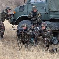 NO PARA,  NEM LESZ HÁBORÚ! Csak éleslövészet a győrszentiváni katonai lőtéren