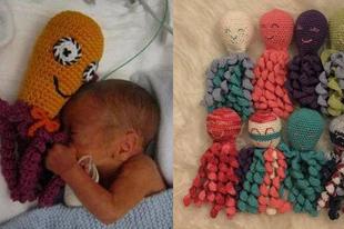 Győrben is segíthetünk polipokkal a koraszülött  kisbabáknak